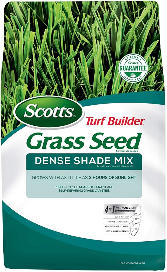 Scotts 18348 Grass Seed What To Do When Grass Wont Grow Under Trees