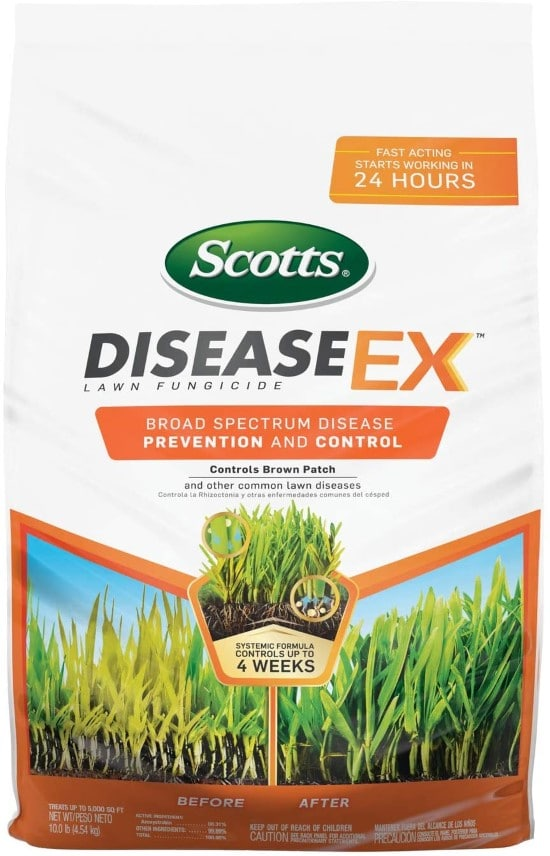 Scotts DiseaseEx Lawn Fungicide What To Do When Grass Wont Grow Under Trees