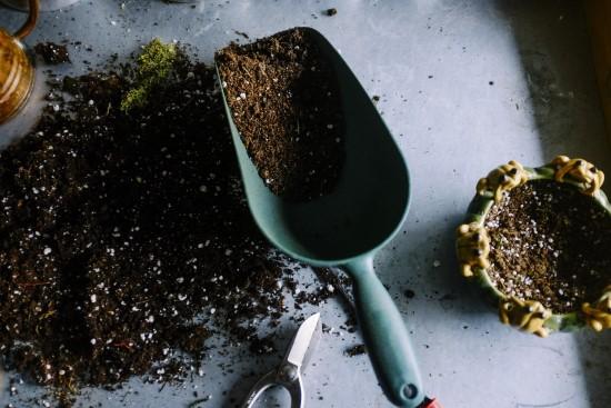 Steps in Acidifying Soil How To Acidify Soil