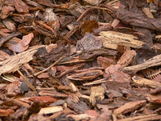 What Is Bark Mulch