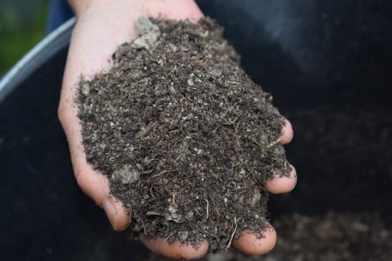 What Mulch Is Good For Vegetable Gardens